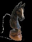 Pferdekopf dunkel